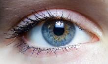 μάτι, ονειροκρίτης,